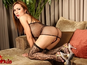An intimate photosession of the hot ladyboy Valencia