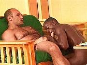 Ivory Cock Sucking