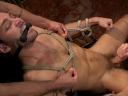 Fucktoy Max Adonis Used