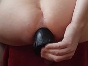 Domestic Partner - SPEAR FISH Anal