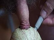 cock pumpig trough melon